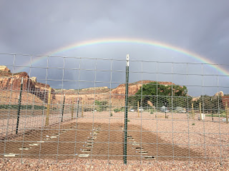 canyonlands-rainbow-1